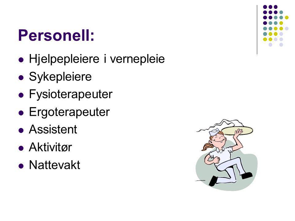 Personell: Hjelpepleiere i vernepleie Sykepleiere Fysioterapeuter