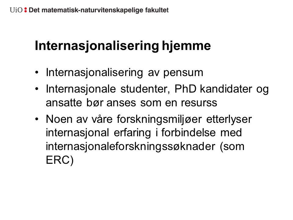 Internasjonalisering hjemme