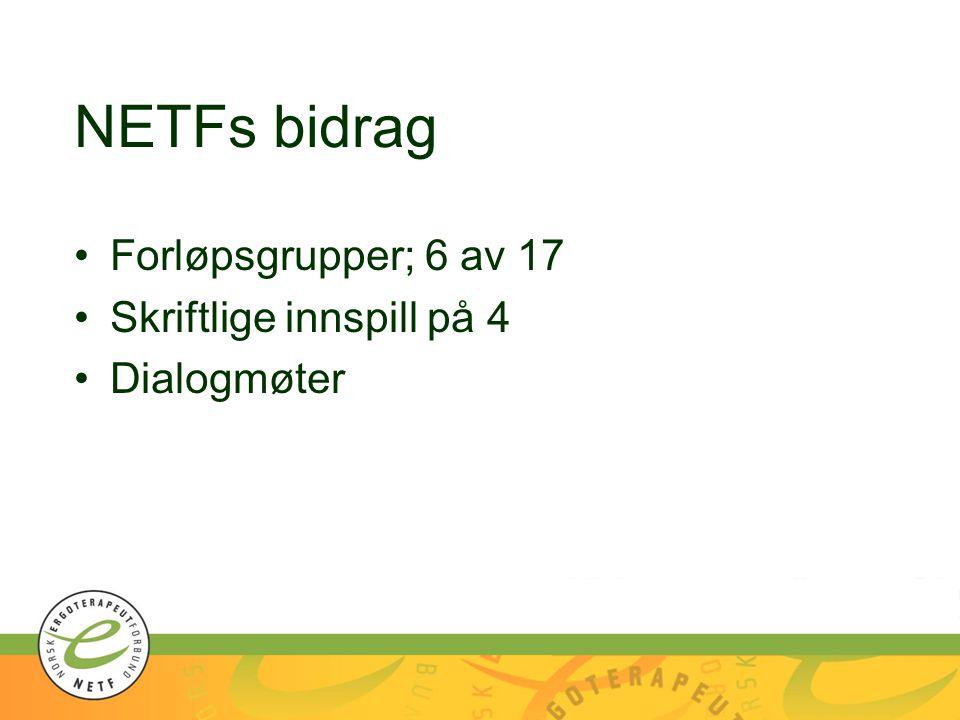 NETFs bidrag Forløpsgrupper; 6 av 17 Skriftlige innspill på 4