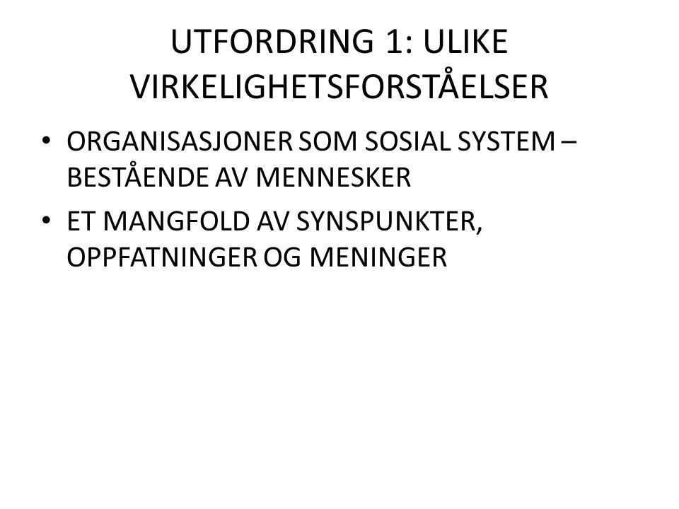 UTFORDRING 1: ULIKE VIRKELIGHETSFORSTÅELSER