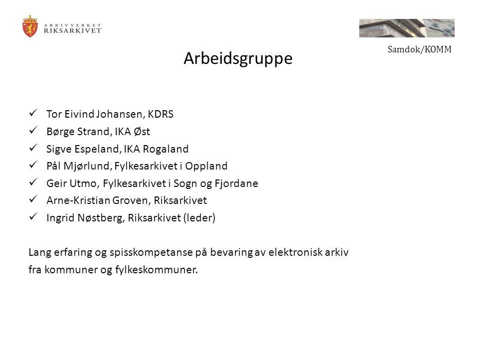 Arbeidsgruppe Tor Eivind Johansen, KDRS Børge Strand, IKA Øst