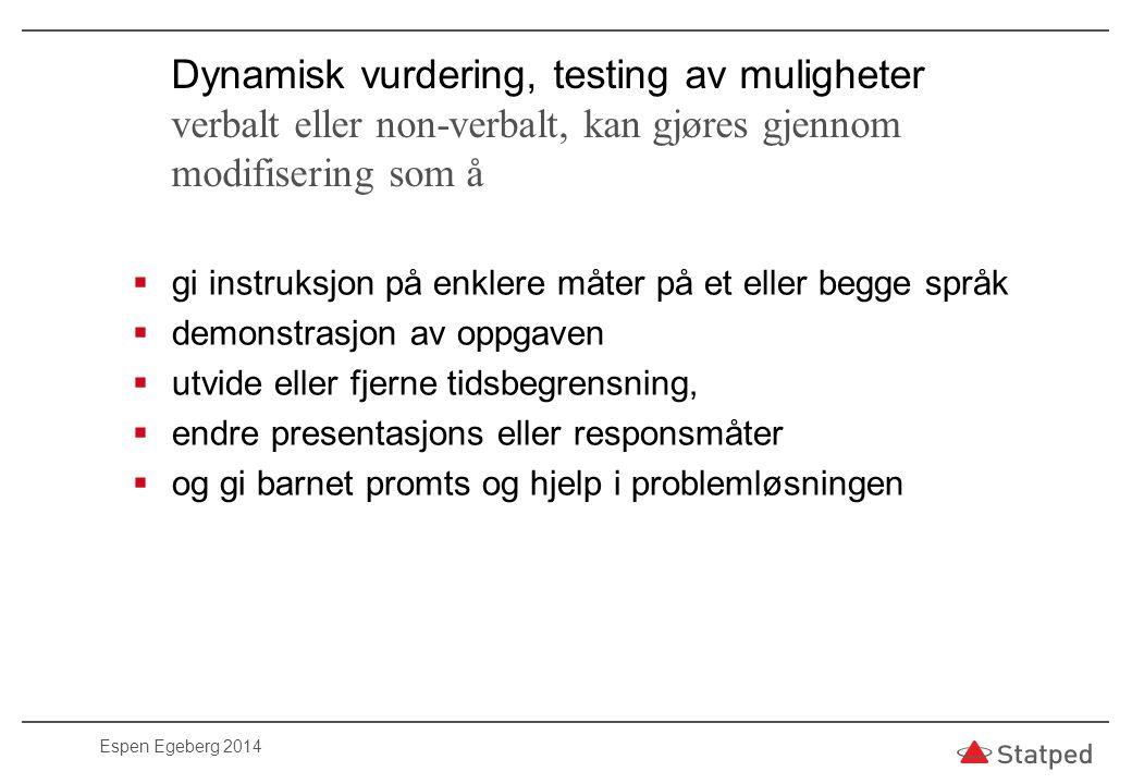 Dynamisk vurdering, testing av muligheter verbalt eller non-verbalt, kan gjøres gjennom modifisering som å