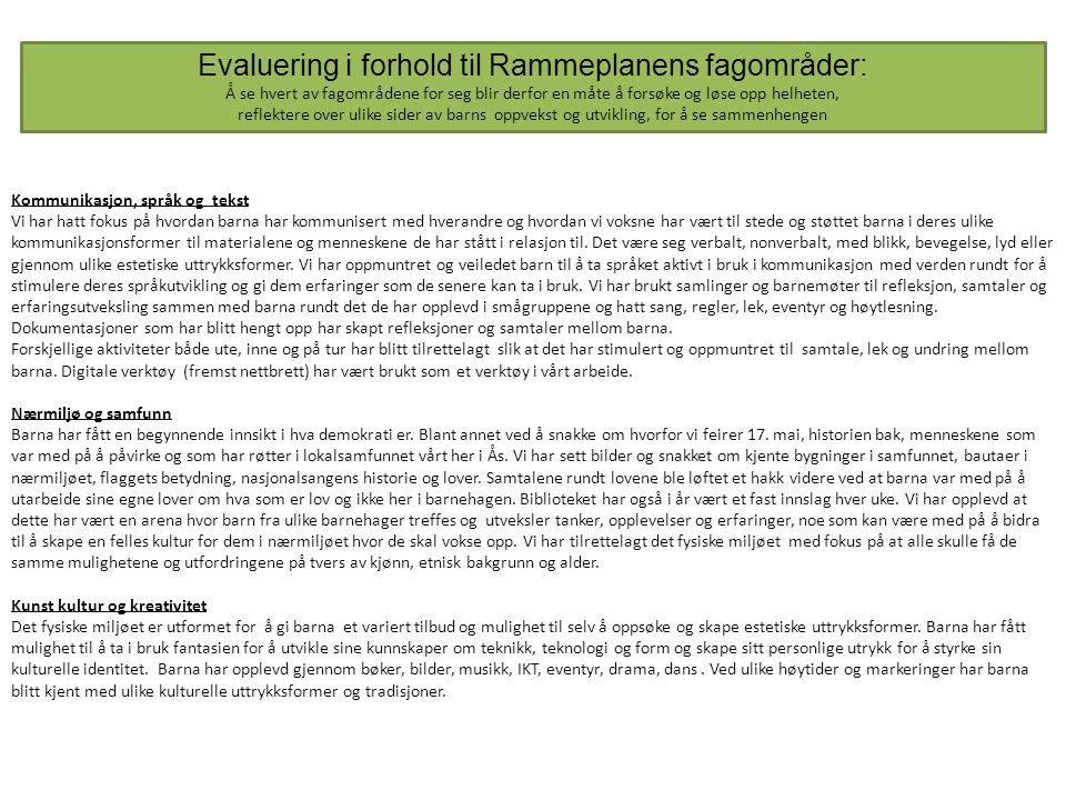 Evaluering i forhold til Rammeplanens fagområder: