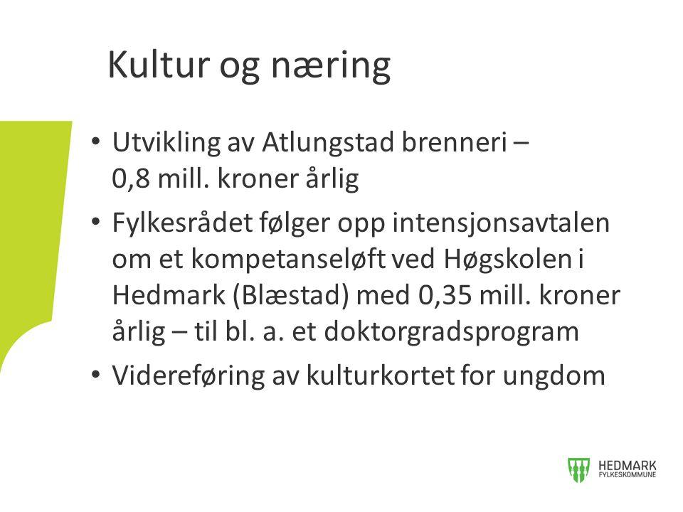 Kultur og næring Utvikling av Atlungstad brenneri – 0,8 mill. kroner årlig.