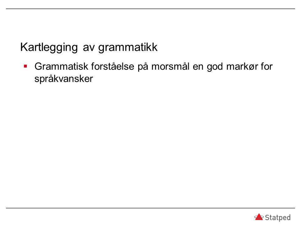 Kartlegging av grammatikk