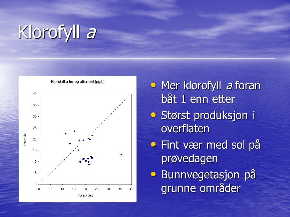 Klorofyll a Mer klorofyll a foran båt 1 enn etter