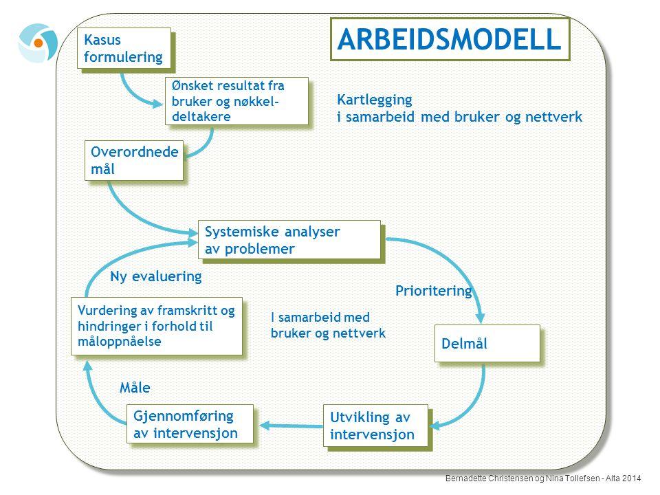 ARBEIDSMODELL Kasus formulering Kartlegging