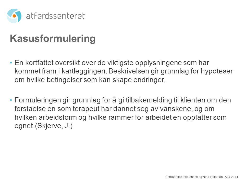 Kasusformulering