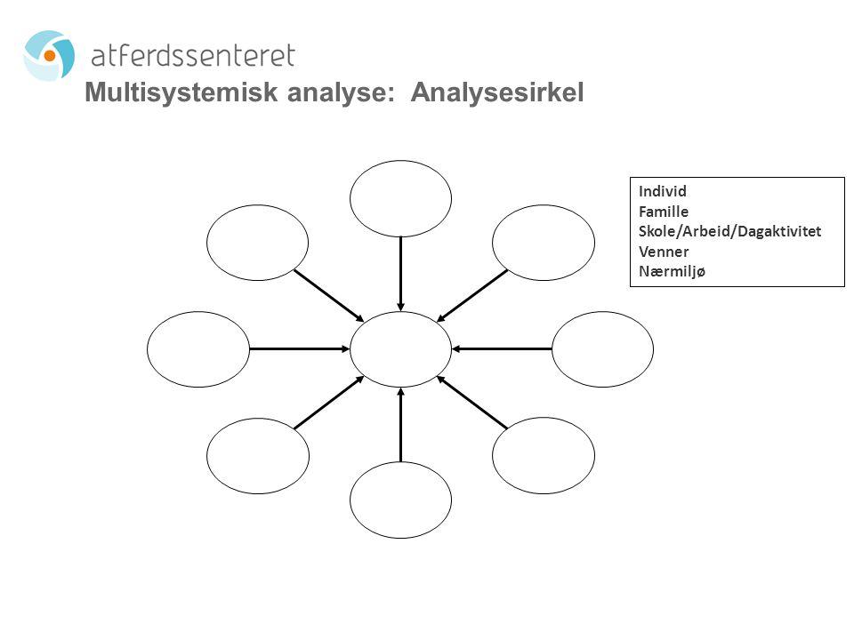 Multisystemisk analyse: Analysesirkel