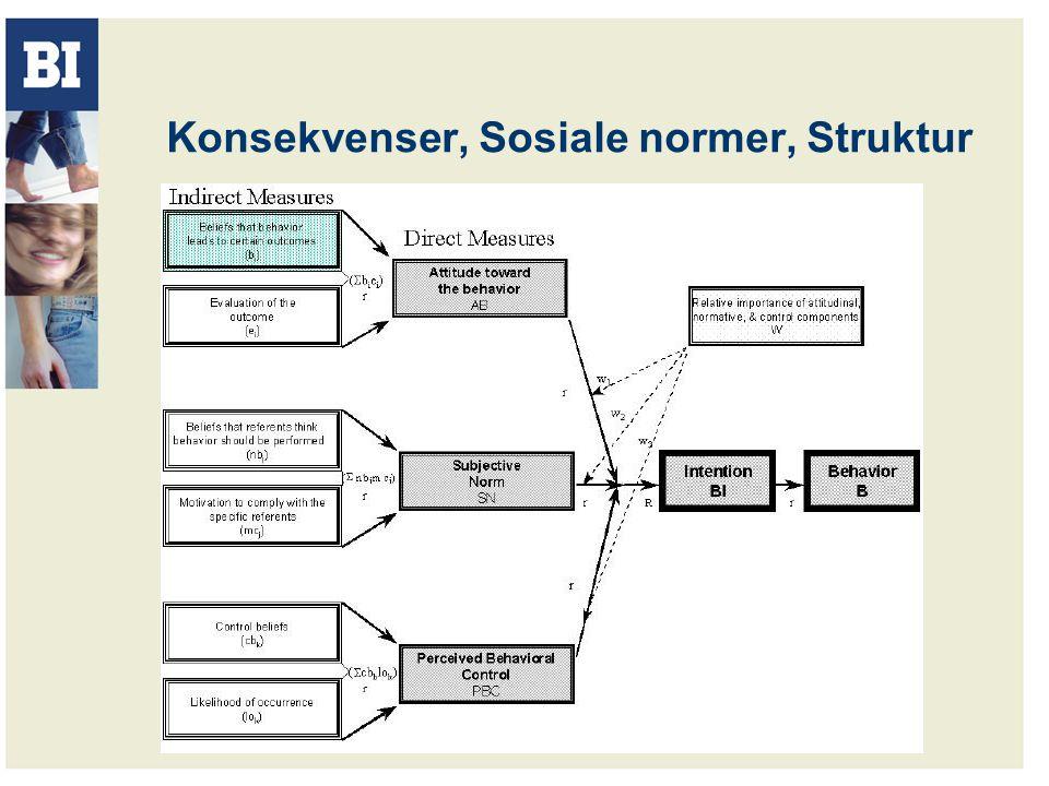 Konsekvenser, Sosiale normer, Struktur