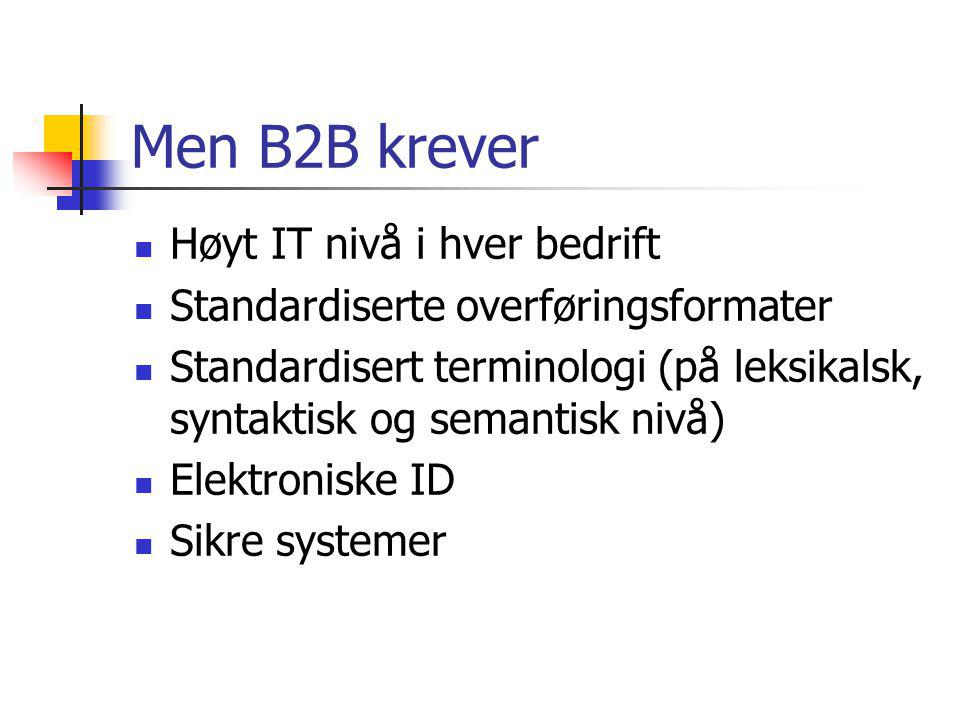 Men B2B krever Høyt IT nivå i hver bedrift
