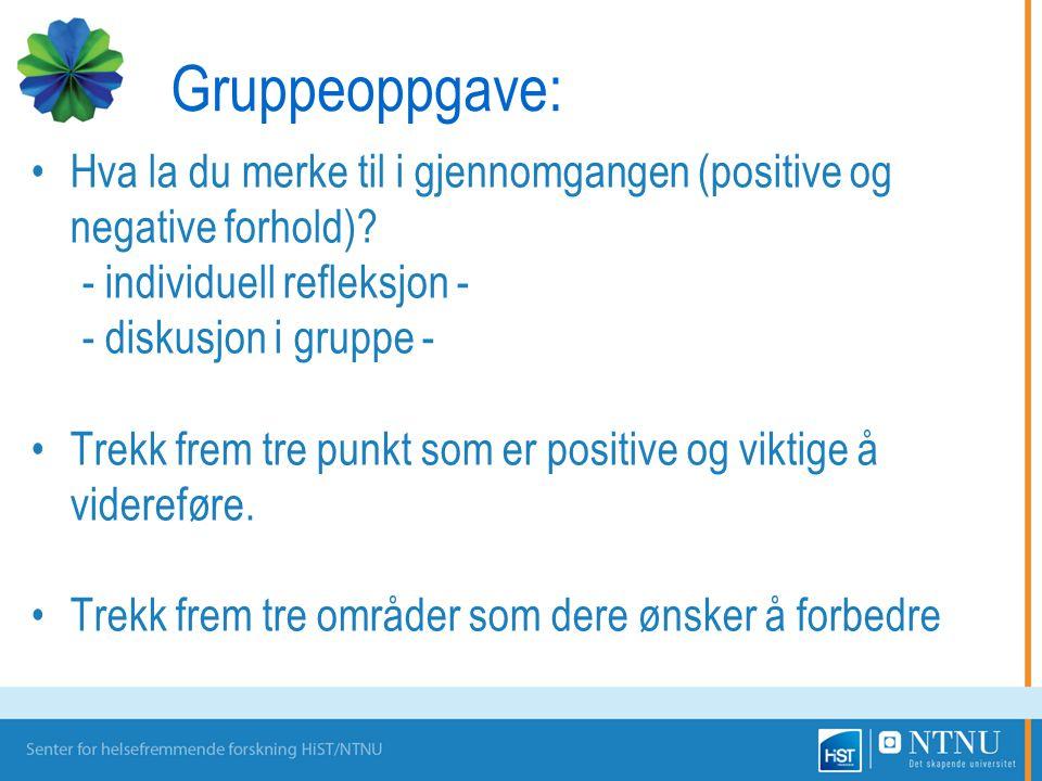 Gruppeoppgave: Hva la du merke til i gjennomgangen (positive og negative forhold) - individuell refleksjon -