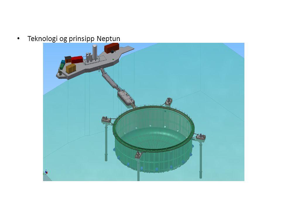 Teknologi og prinsipp Neptun