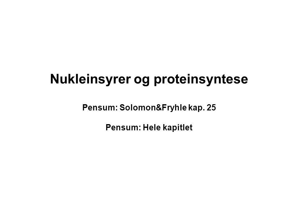 Nukleinsyrer og proteinsyntese Pensum: Solomon&Fryhle kap