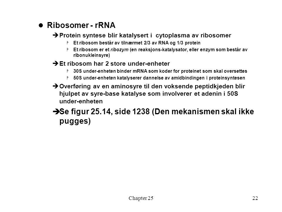Se figur 25.14, side 1238 (Den mekanismen skal ikke pugges)