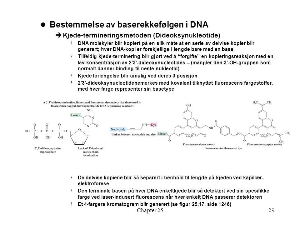 Bestemmelse av baserekkefølgen i DNA