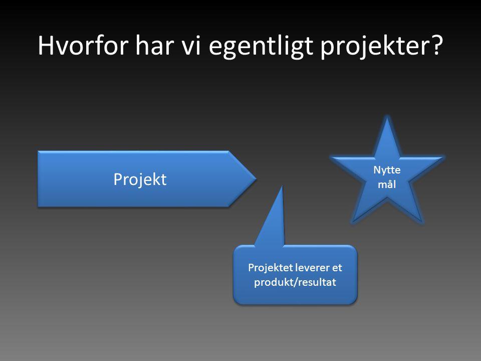 Hvorfor har vi egentligt projekter