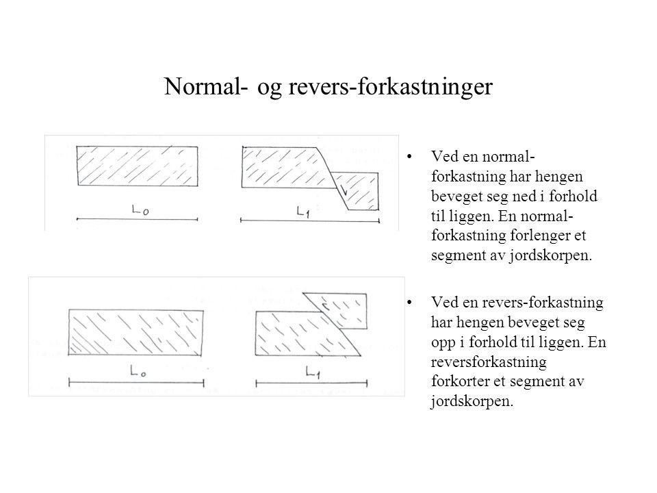 Normal- og revers-forkastninger