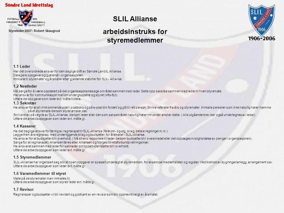 arbeidsinstruks for styremedlemmer Styreleder 2007: Robert Skaugrud