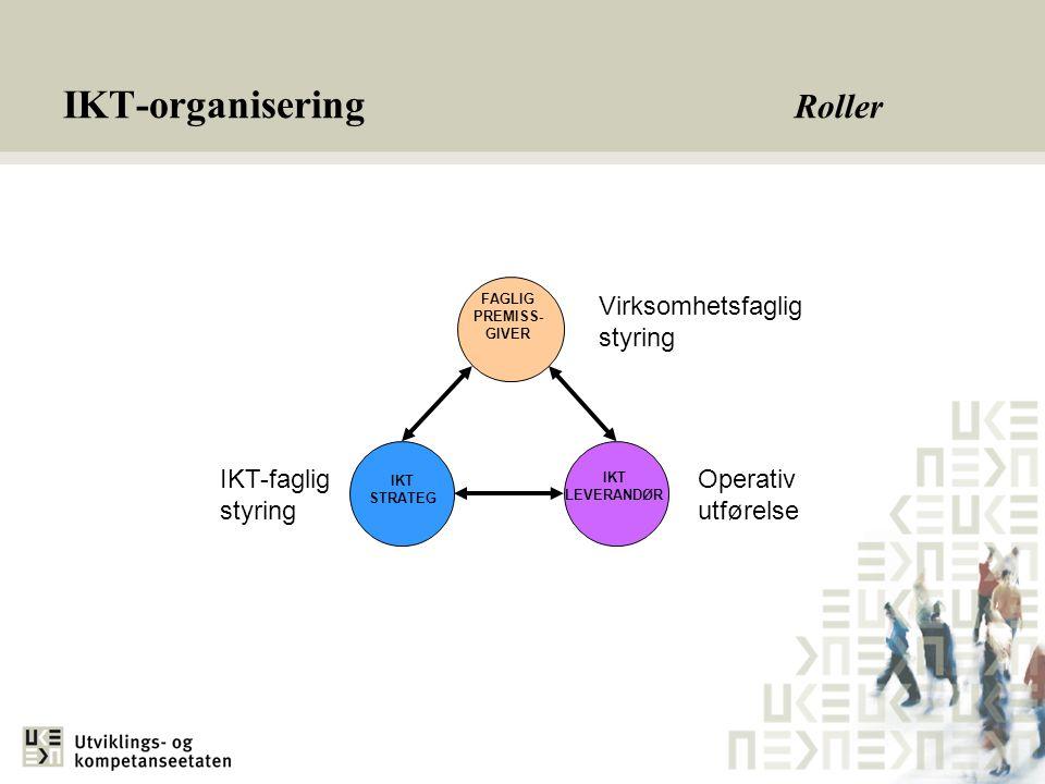 IKT-organisering Roller