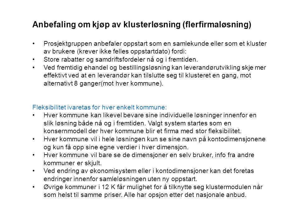 Anbefaling om kjøp av klusterløsning (flerfirmaløsning)