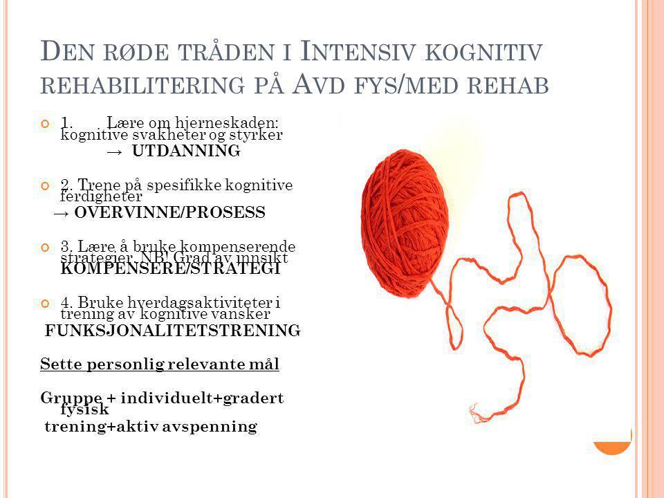 Den røde tråden i Intensiv kognitiv rehabilitering på Avd fys/med rehab