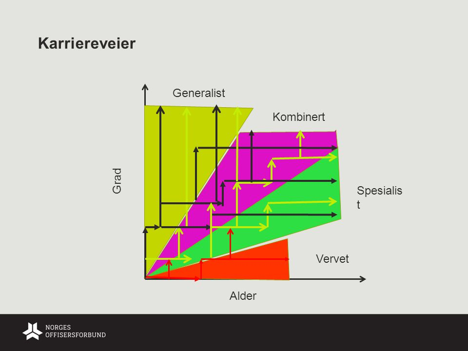 Karriereveier Generalist Kombinert Grad Spesialist Vervet Alder