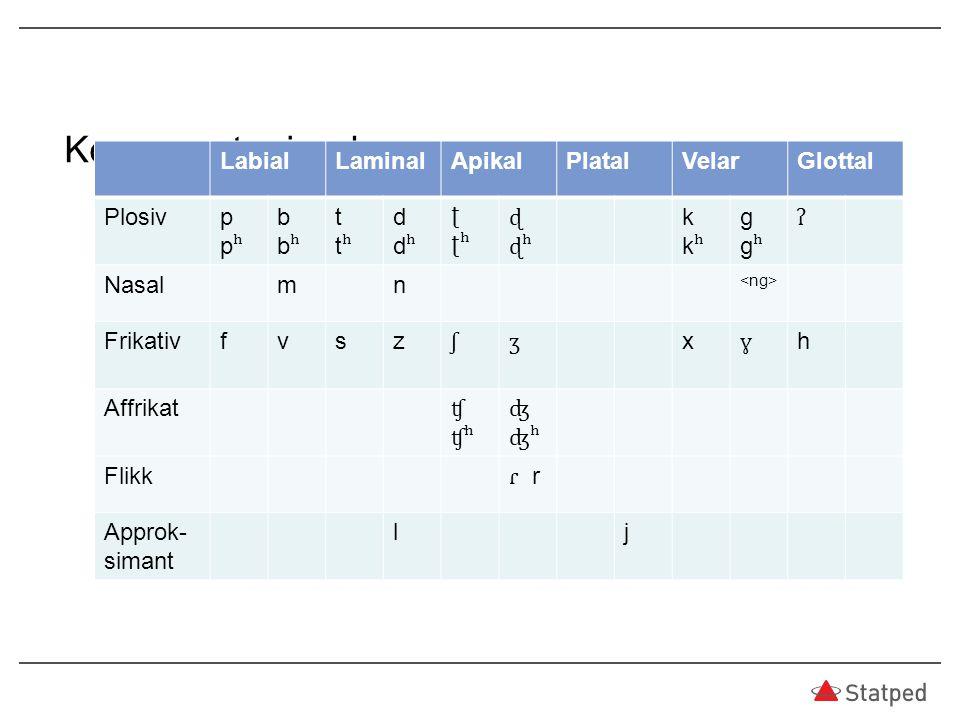 Konsonanter i urdu Approk-simant l j Labial Laminal Apikal Platal