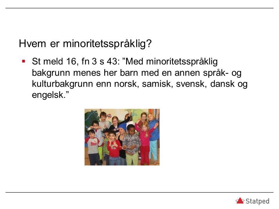 Hvem er minoritetsspråklig