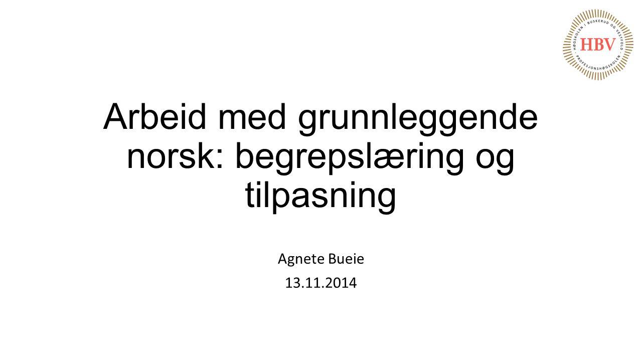Arbeid med grunnleggende norsk: begrepslæring og tilpasning