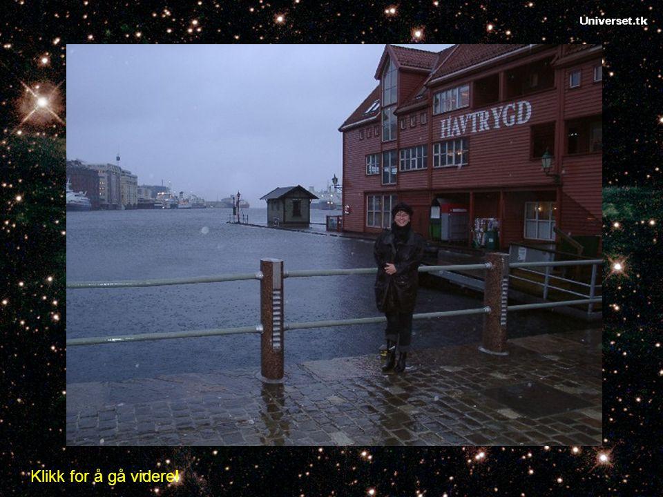 Stormflo får en når en storm presser havet opp mot land samtid med en springflo. Bildet viser stormflo i Bergen 2005