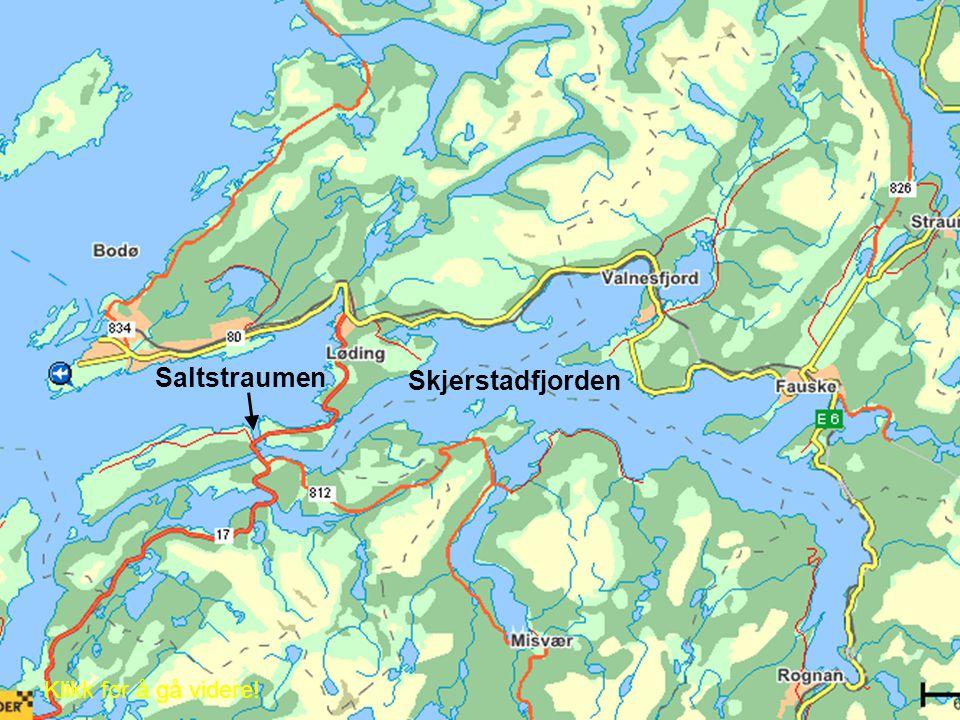 Saltstraumen Skjerstadfjorden Klikk for å gå videre!