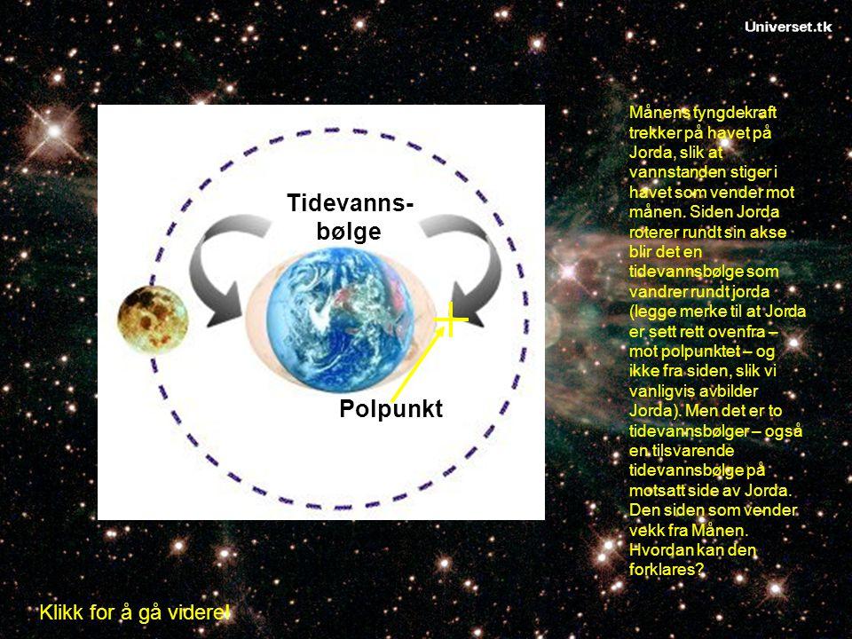Tidevanns- bølge Polpunkt