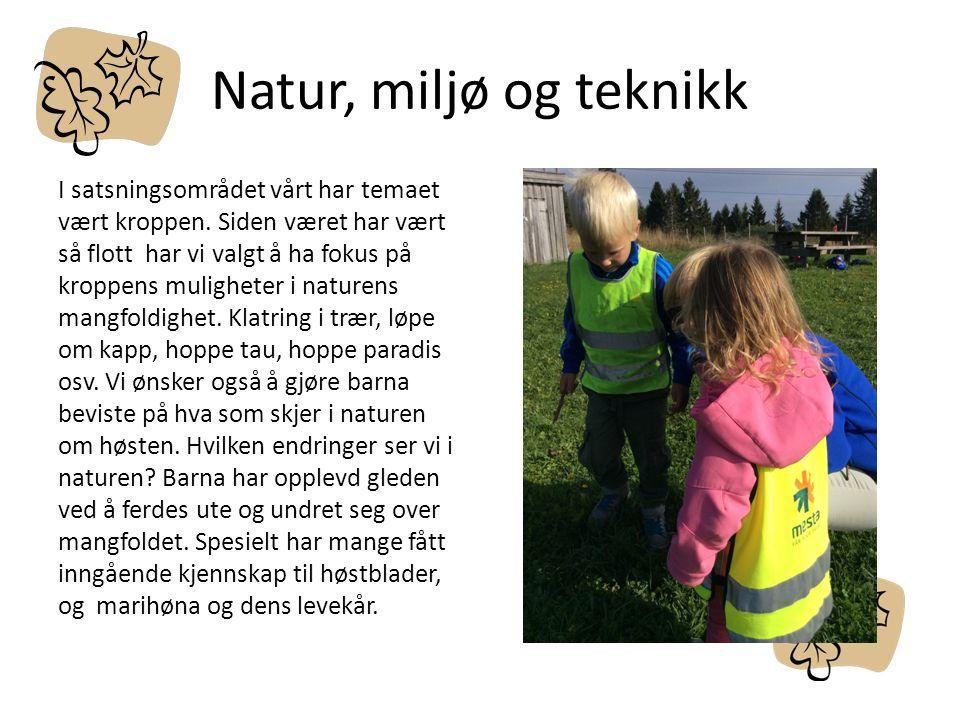 Natur, miljø og teknikk