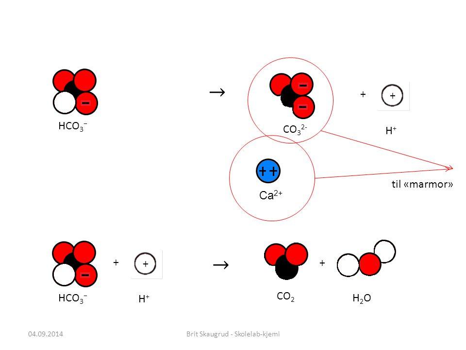 Brit Skaugrud - Skolelab-kjemi