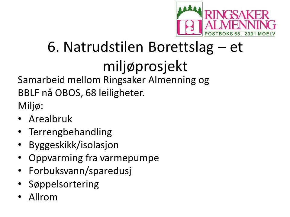 6. Natrudstilen Borettslag – et miljøprosjekt