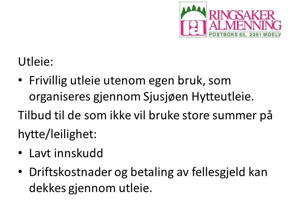 Utleie: Frivillig utleie utenom egen bruk, som organiseres gjennom Sjusjøen Hytteutleie. Tilbud til de som ikke vil bruke store summer på.