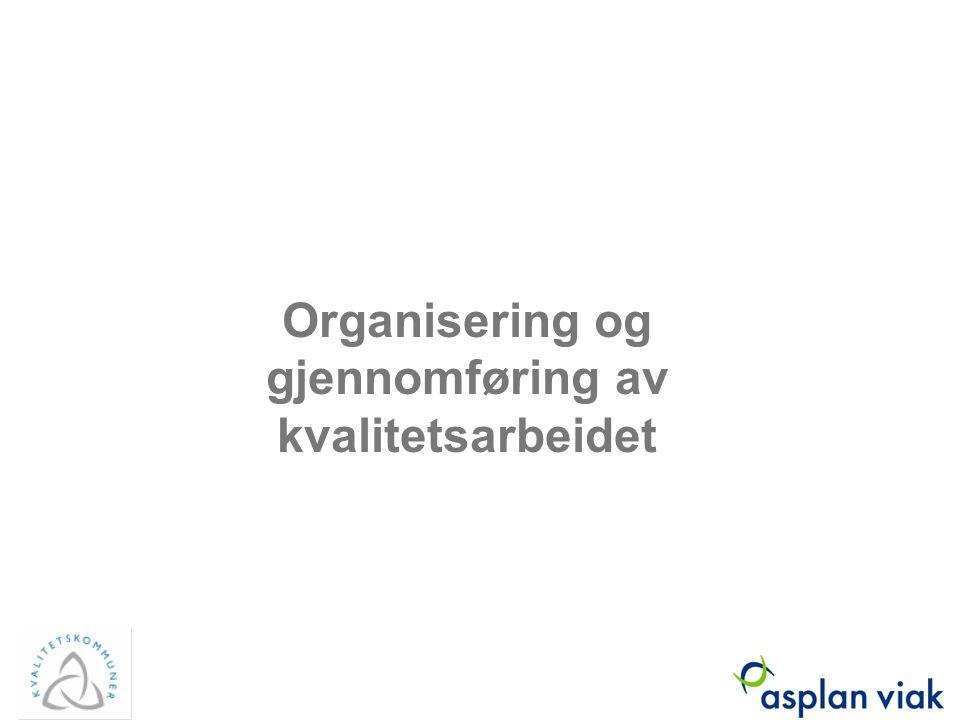 Organisering og gjennomføring av kvalitetsarbeidet