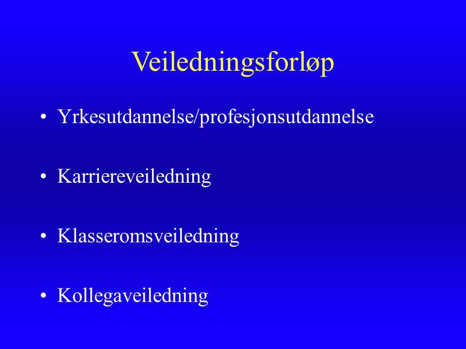 Veiledningsforløp Yrkesutdannelse/profesjonsutdannelse