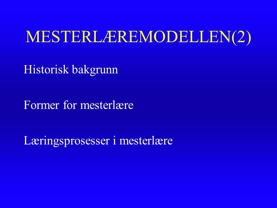 MESTERLÆREMODELLEN(2)