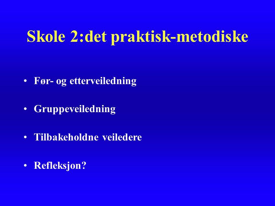 Skole 2:det praktisk-metodiske