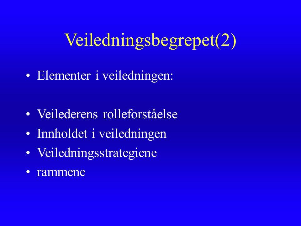 Veiledningsbegrepet(2)