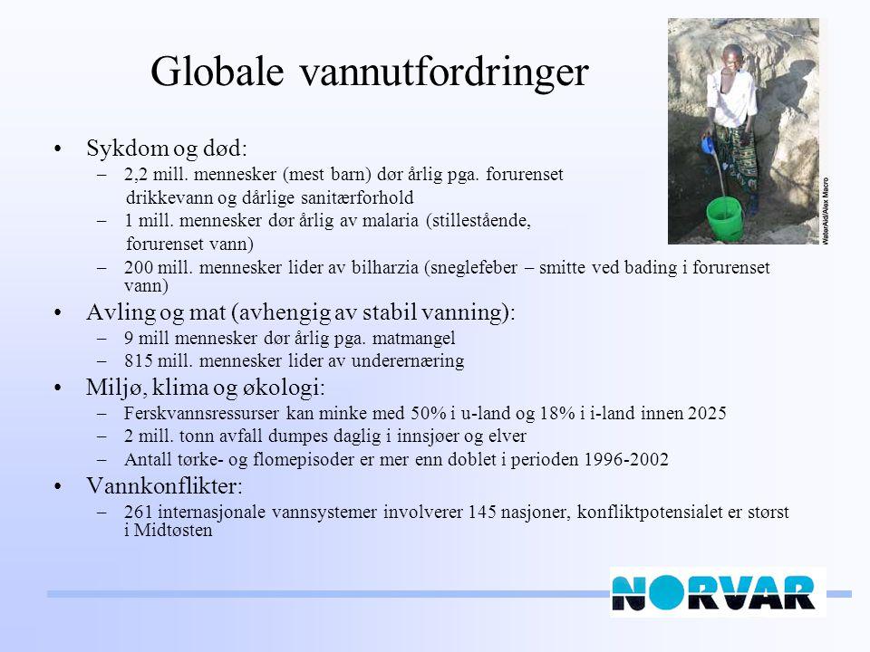 Globale vannutfordringer