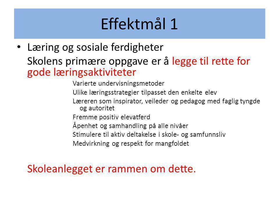 Effektmål 1 Læring og sosiale ferdigheter
