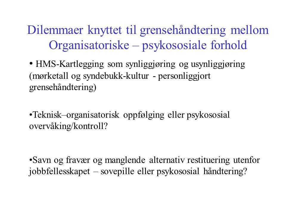 Dilemmaer knyttet til grensehåndtering mellom Organisatoriske – psykososiale forhold