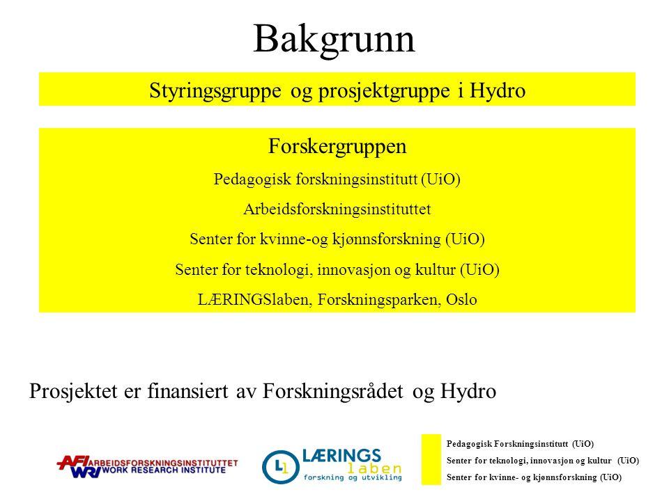 Bakgrunn Styringsgruppe og prosjektgruppe i Hydro Forskergruppen