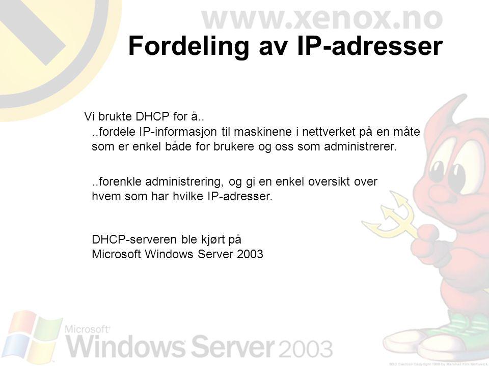 Fordeling av IP-adresser