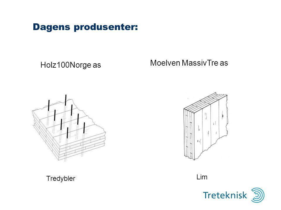 Dagens produsenter: Moelven MassivTre as Holz100Norge as Tredybler Lim