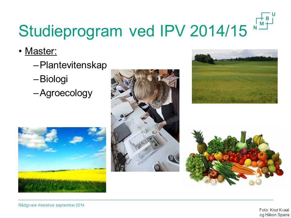 Studieprogram ved IPV 2014/15