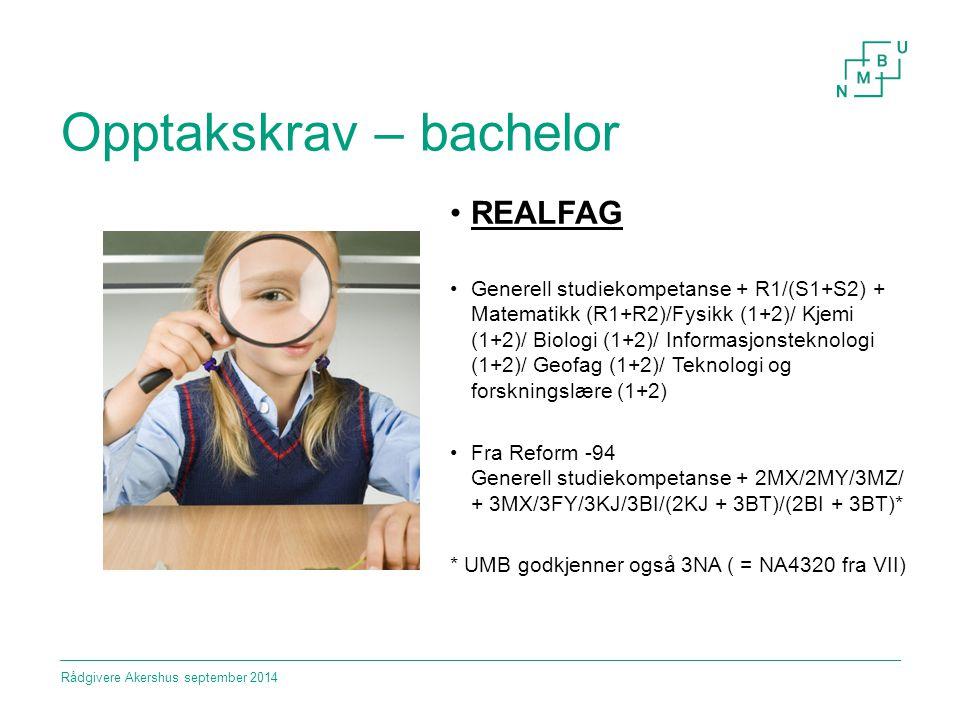 Opptakskrav – bachelor